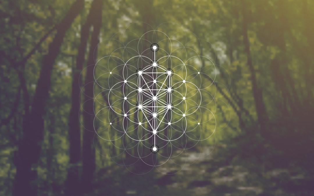 The Tree of Life: Yggdrasill